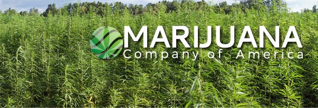 marijuana-company-of-america-inc